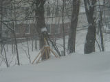 Trebuchet in the Snow